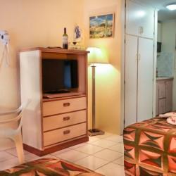 Sasaki Apartments 106 Pano